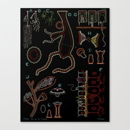 Paul Sougy: The Hydra, 1962 (proceeds benefit The Nature Conservancy) Canvas Print