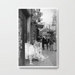 Rhino in Camberwell London Metal Print