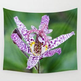 Toad Lily Wall Tapestry