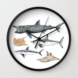 Shark diversity Wall Clock