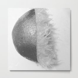 Squeezed Lime Metal Print