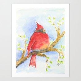 Mr. Cardinal Art Print