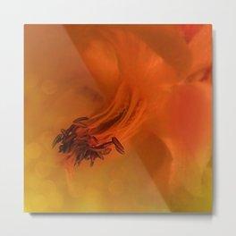 Columbine Flower Edited Orange Metal Print