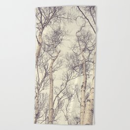 Winter Birch Trees Beach Towel
