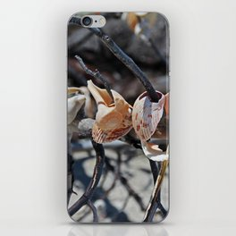 Dare to Touch iPhone Skin