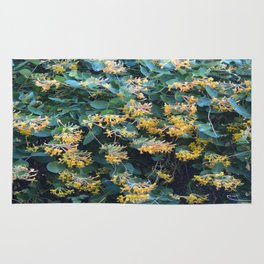 Honeysuckle Flowers – Golden Showers Rug