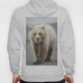 Grizzy Bear One Hoody