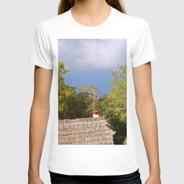 Hay Roof View T-shirt