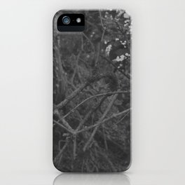 Dark and scary forest iPhone Case