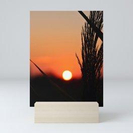 Through to the Setting Sun Mini Art Print
