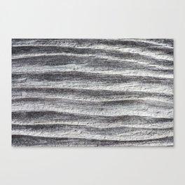 House on 831 Woodgrain Canvas Print
