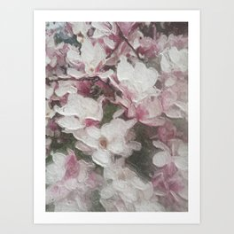 Magnolia Blooms in the Rain Art Print