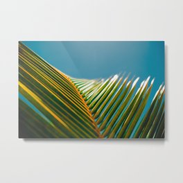 green and turquoise Metal Print