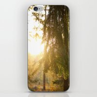 forrest iPhone & iPod Skins featuring Forrest by Mariana Biller