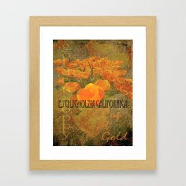 Cup of Gold - The California Poppy Framed Art Print