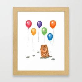 Pomeranian with balloons Framed Art Print