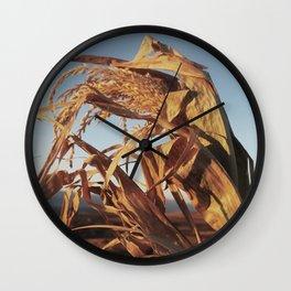 Corn Season Wall Clock