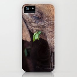 Solemn Moments iPhone Case