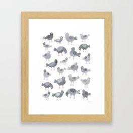 Pigeon Pattern Framed Art Print
