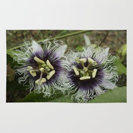 Passion Flower Purple Duo Rug