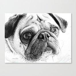 Cute Pug Art By Annie Zeno Canvas Print