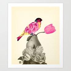 The Bird & the Pear Art Print