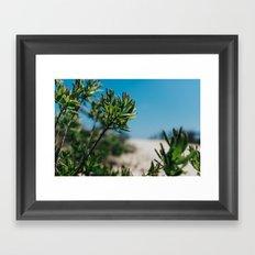 Shore life Framed Art Print
