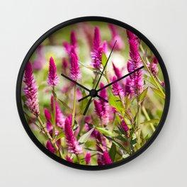 Colorful Celosia Wall Clock