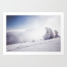 Frosty day Art Print