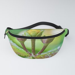 Refreshing nature Fanny Pack