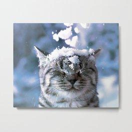 Snow Cat Metal Print