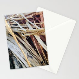 After the Storm - Hurricane Michael Aftermath (3) - Tree Stationery Cards