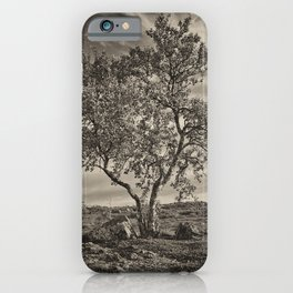 A tree in the mountains iPhone Case
