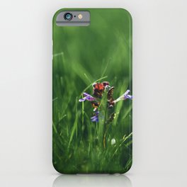 Spring has arrived! || Spring Blossoms. || MadaraTravels iPhone Case