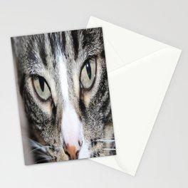 Beautiful eyes Stationery Cards