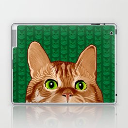 Roswell the Cat Laptop & iPad Skin