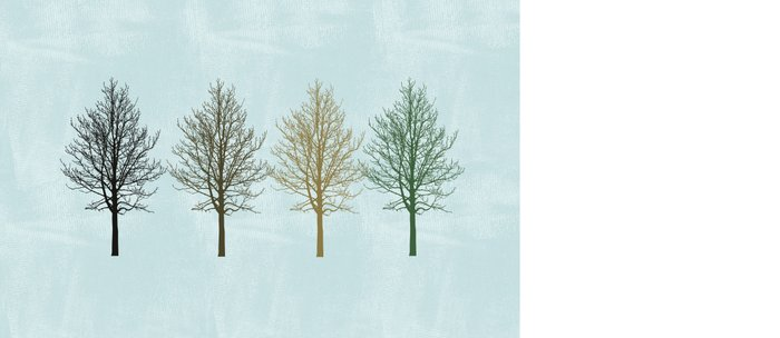 Four Colors Trees Coffee Mug