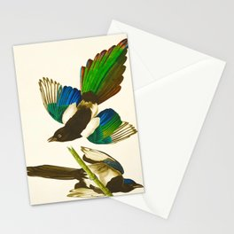 Magpie Vintage Scientific Bird Illustration Stationery Cards