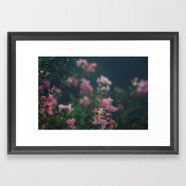Soft Hues II Framed Art Print