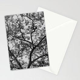 Acacia Abstract Stationery Cards