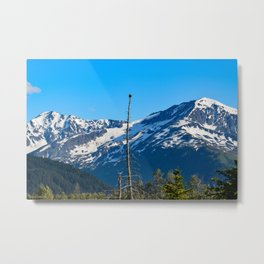 Perch With A View - III Metal Print