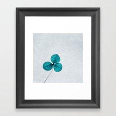blue clover Framed Art Print