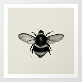 The Bumblebee Art Print