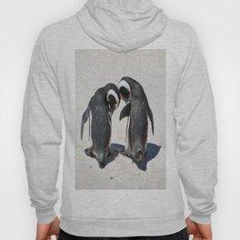 Penguins of Boulder Beach Hoody