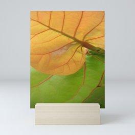 Sea Grape Leaves Mini Art Print