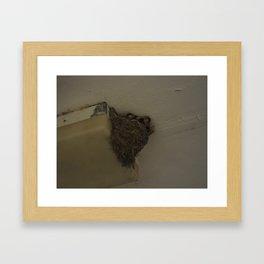birds nest at the zoo Framed Art Print