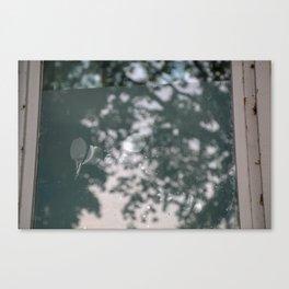 blurry window mirrors aqua tree Canvas Print