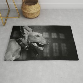 Dogs with game face on .27 Rug