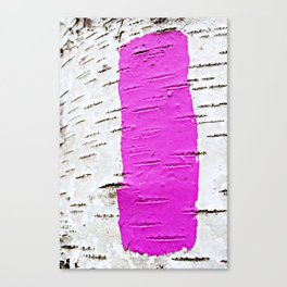 Mark Your Trail with Color Canvas Print