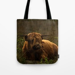 Scottish Highland hairy cow Tote Bag